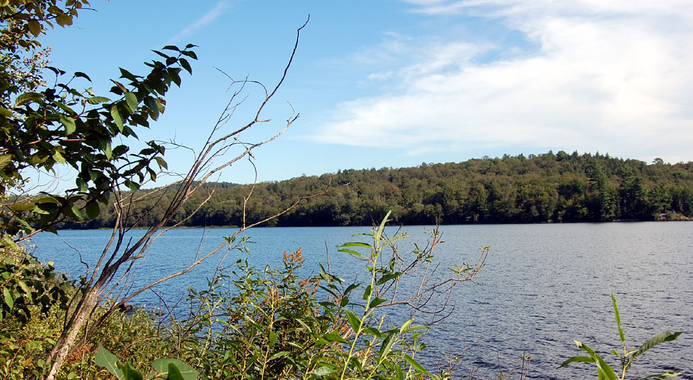 Southern adirondack lakefront waterfront properties for Lake front properties
